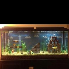 Mario fish tank, now I want to change my 50 gallon haha