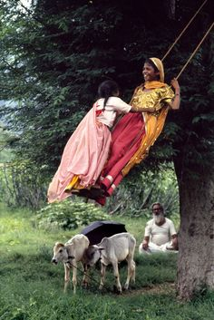 Indian goat farmers