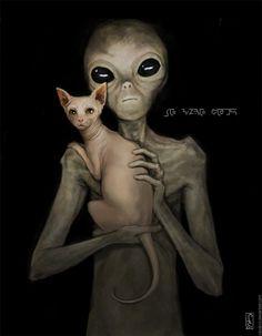 Доской сфинкс ☆ Cat art sphinx