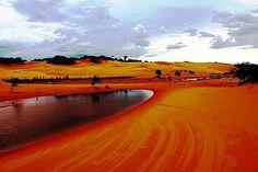 Tocantins - Brazil