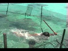 Native American fish trap, Wilderness Survival - YouTube