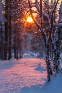 ★ mine is the night, with all her stars ★ – Winterbilder Winter Sunset, Winter Scenery, Winter Love, Winter Pictures, Nature Pictures, Holiday Pictures, Winter Photography, Nature Photography, Photography Flowers