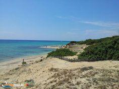 Torre Borraco beach, San Pietro in Bevagna - Campomarino http://www.puntaprosciutto.com/spiaggia/spiaggia-zona-torre-borraco