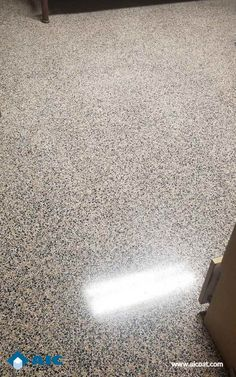 Terrazzo Restoration Fire Station Jacksonville | Advance Industrial Coatings Jacksonville Florida, Polished Concrete, Terrazzo, High Gloss, Restoration, Fire, Flooring, Boden, Wood Flooring