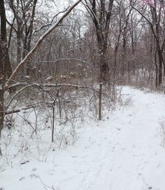 Turkey Mountain trail dressed in beautiful snow. Tulsa, Oklahoma