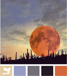 color set - this isn't so much for the palette, but more for the pic of the moon rising.  This is what it looks like in New Mexico