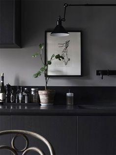 Kaninmålning i köket