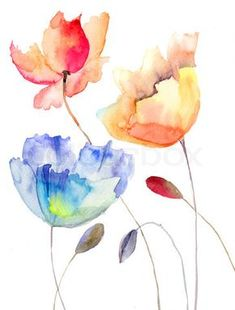 Image of 'Beautiful summer flowers, watercolor illustration' on Colourbox