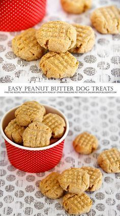{RECIPE} Easy Peanut Butter Dog Biscuits This is a very easy peanut butter biscuit recipe for anyone looking for a special homemade dog treat idea. It's quick, simple, and hard to mess up. Dog Cookie Recipes, Homemade Dog Cookies, Dog Biscuit Recipes, Homemade Dog Food, Dog Food Recipes, Homemade Biscuits, Easy Dog Cookie Recipe, Cookies For Dogs, Simple Dog Treat Recipe