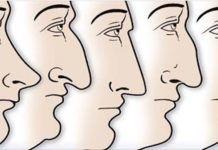 Τι αποκαλύπτει το σχήμα της μύτης σας για την προσωπικότητά σας;