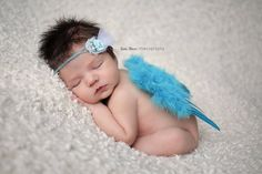 Aqua Blue Feather Angel Wings Newborn Baby Photo Prop | Beautiful Photo Props