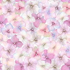 Pink flower pattern seamless vector