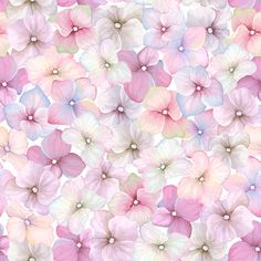 Pink flower pattern seamless vector