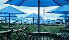 替世界「穿衣服」的藝術家:Christo and Jeanne-Claude - La Vie行動家 設計改變世界