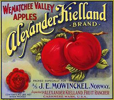 This fruit crate label was used on Alexander Kielland Apples, c. 1910s: 'Wenatchee Valley Apples. Alexander Kielland Brand. Packed Especially for A/S J.E. Mowinckel, Norway. Inspected by Alexander Kie