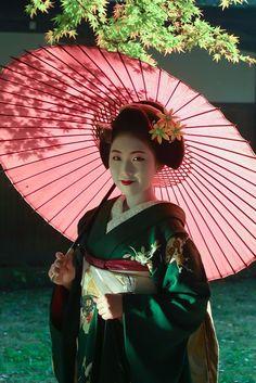 Memoirs of a Geisha Japanese Geisha, Japanese Beauty, Japanese Kimono, Japanese Girl, Asian Beauty, Samourai Tattoo, Look Kimono, Geisha Art, Kimono Japan