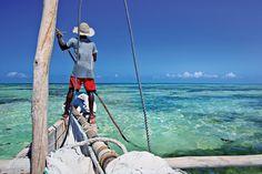 Zanzibar, une nature d'une envoûtante beauté