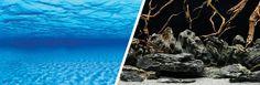 Fondo Decorativo  Marino/Natural 3D MARINA 7,6m - #FaunAnimal ofrecen una amplia variedad de paisajes, impresionante color que añade intensidad visual de aspecto natural y la vitalidad a los acuarios.