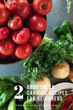 Making homemade salsa is a great way to use up all of the extra tomatoes from your garden and store them for winter. Discover how to make these 2 Easy Salsa Canning Recipes for Beginners. Canning Homemade Salsa, Salsa Canning Recipes, Easy Canning, Canning Salsa, Canning Tomatoes, Salsa Recipe, Salsa For Beginners, Recipes For Beginners, Fresh Tomato Salsa