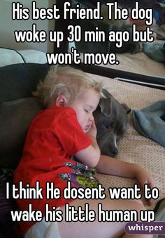 His best friend. The dog woke up 30 min ago but won't move. I think He dosent want to wake his little human up Animal Memes, Funny Animals, Cute Animals, Baby Animals, I Love Dogs, Puppy Love, Cute Puppies, Cute Dogs, Animal Pictures