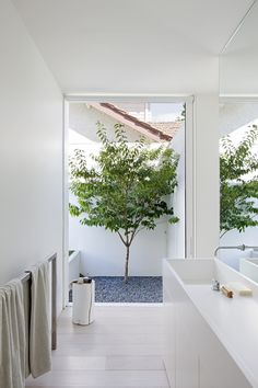 The Bourne Road Residence Frames the Outdoor Spaces - Design Milk House Design, House Interior, Bathroom Interior Design, Home, Outdoor Space Design, Bathroom Design, Modern House, Interior Garden, Patio Interior