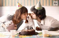 Tulipan Condoms: Puppies, Birthday
