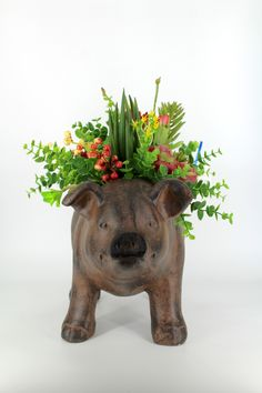 The perfect farmhouse pig succulent arrangement is at Magnolias! Customized just for you, this pig planter is a great succulent piece for your farmhouse or shabby chic style!