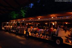 The Singapore Zoo's Night Safari is a treat