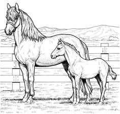 Printable Horse Head Coloring Pages In Animals Style