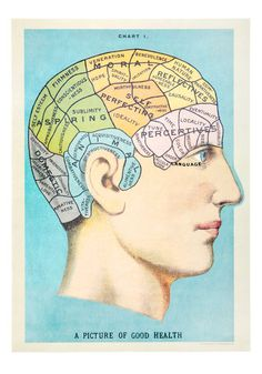 Ah! The lost art of phrenology....psychology has come so far.