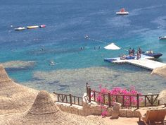 Hilton Sharks Bay Egypt beach, fabulous view and the most amazing fish in the Red Sea.