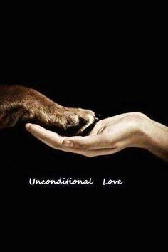 No judgement. Just love.