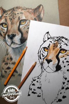 Wild Animal Coloring Page Cheetah Coloring Page