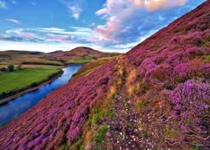 Edinburgh, Inverness & Glasgow FROM JFK $999 *PER PERSON 7+NIGHTS