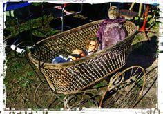 This baby cart has attitude.