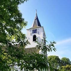 The lovely white church in green Vierhuizen a super small village of only 130 inhabitants and one B&B where I was a guest.