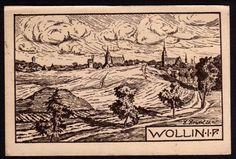 41769 AK Wollin 1921 Künstlerkarte R. Roertel 20