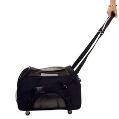 Bergan Pet Dog Cat Wheeled Comfort Carrier Tote Crate Airline Approved Large NEW Cat Stroller, Airline Pet Carrier, Pet Dogs, Pets, Cat Carrier, Black Wheels, Pet Travel, Travel Tips, Cat Supplies