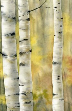 42 ideas for birch tree trunk aspen - Modern Watercolor Trees, Watercolor Landscape, Watercolour Painting, Watercolours, Watercolor Portraits, Watercolor Techniques, Painting Techniques, Painting Tutorials, Birch Tree Art