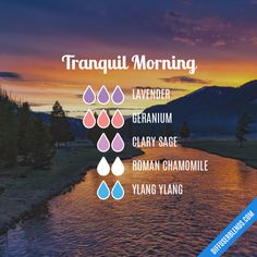 Tranquil Morning - Essential Oil Diffuser Blend