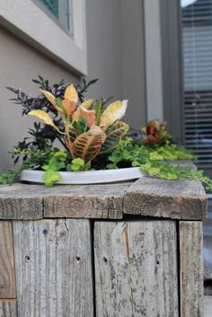barn board planter bench