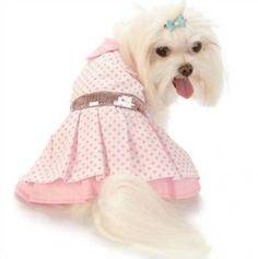 ropa-perros-3