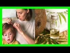 Cuáles son los Beneficios Cosméticos del Aceite de Coco http://youtu.be/vcuaV1VPy9U