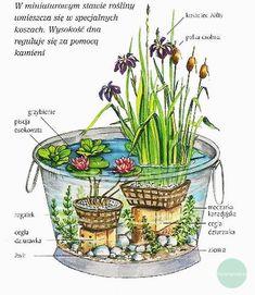 Znalezione obrazy dla zapytania jak zrobic male oczko wodne w ogrodzie