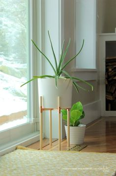 DIY pipe and dowel planter stand