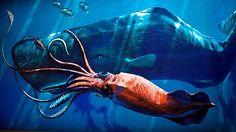 Fogonazos: La ciencia revela el arma secreta del cachalote