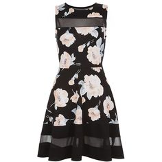 Cameo Rose Black Floral Print Mesh Panel Skater Dress (€26) ❤ liked on Polyvore featuring dresses, going out dresses, black sleeveless dress, party dresses, black mini dress and night out dresses