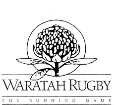waratah - Google Search Australian Flowers, Google Search, Home Decor, Decoration Home, Room Decor, Home Interior Design, Home Decoration, Interior Design