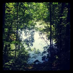 Oregon Ridge Park in Cockeysville, MD - our park location for this year 9.28.2014