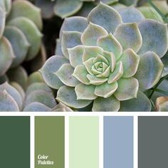 Blue Color Palettes, color of greenery, color solution for house, cool shades of green, dark green, gray, light green, pale light green, selection of color, shades of green.